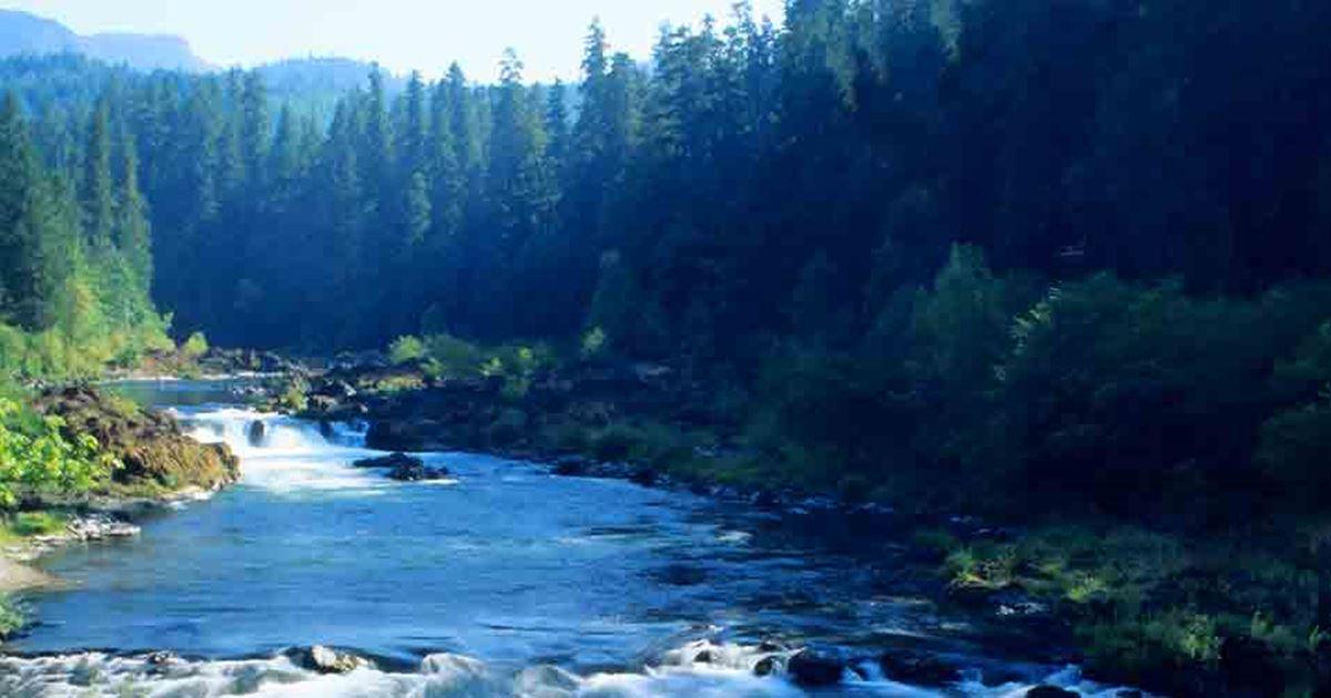 Deschutes River Fishing Report - Maupin, Oregon