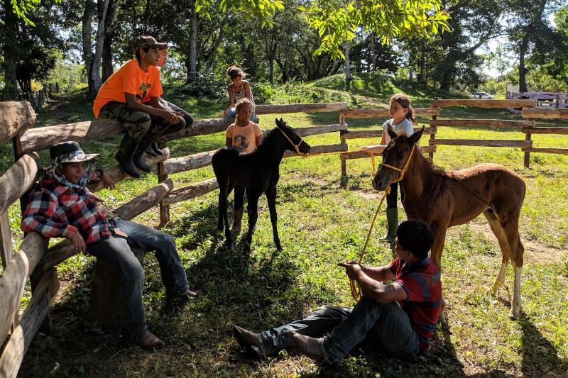 Horseback Riding in Belize at Banana Bank Lodge